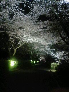 再び与田切公園へ