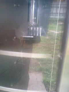 カブトムシの自販機