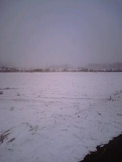 塩尻雪模様