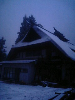 雪が降り始めました