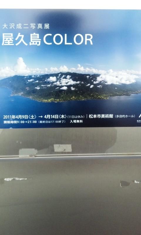 屋久島COLOR